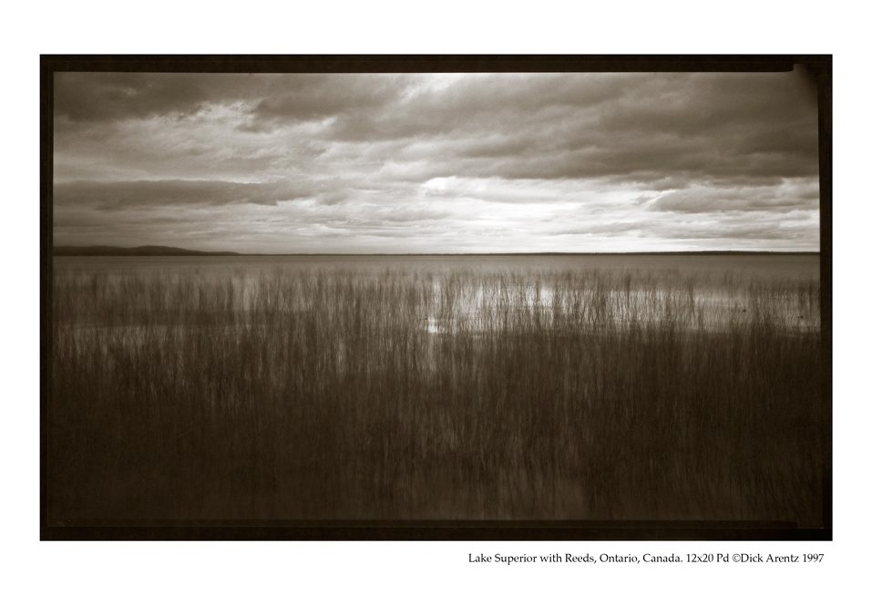 Lake Superior with Reeds, Ontario, Canada