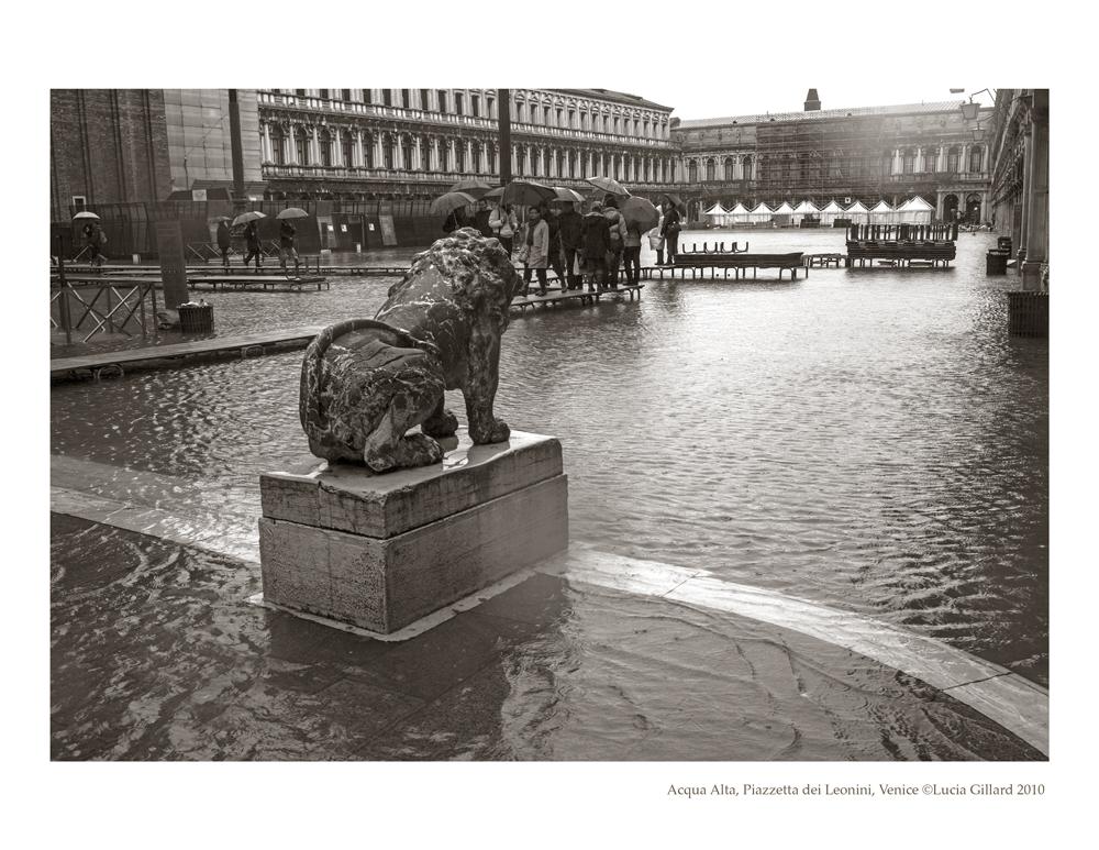 Acqua Alta, Piazzetta dei Leonini - Venice in Winter