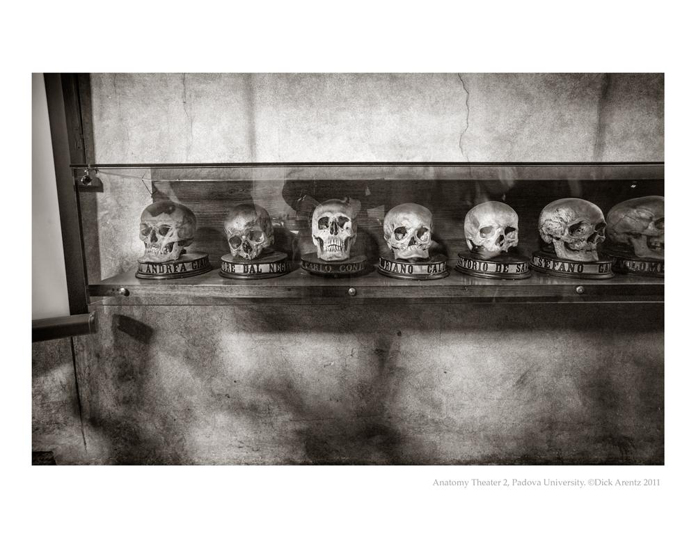 Skulls-Padova-2011-8x10-Pd
